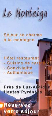 Hôtel Luz Le Montaigu
